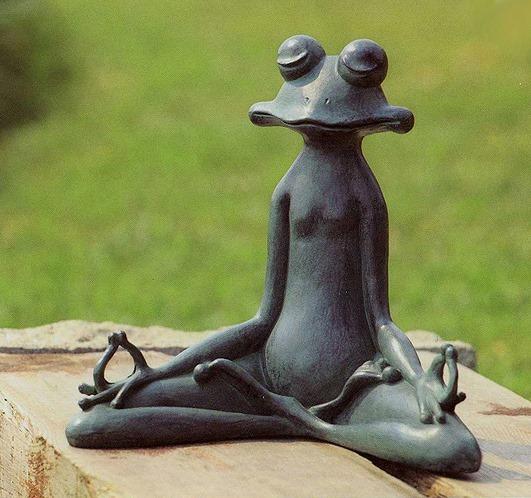 Frog meditations